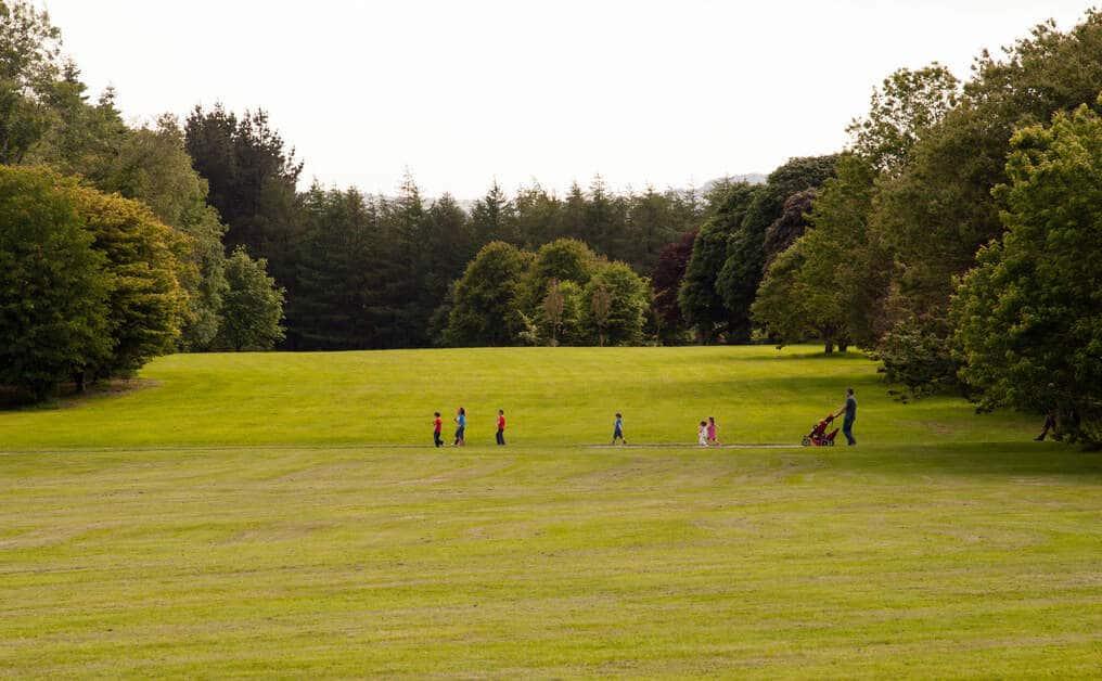 John F Kennedy Arboretum Heritage Site Wexford